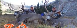 Zach Bowhay hunting tips